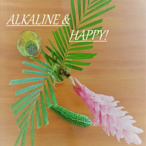 alkaline and happy ebook by Pure You Life